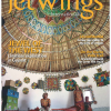 JETWINGS – January 2014