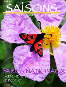 SAISONS TUNISIENNES – Avril 2013